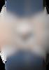 CHRONOMASTER旗舰系列 旗舰系列